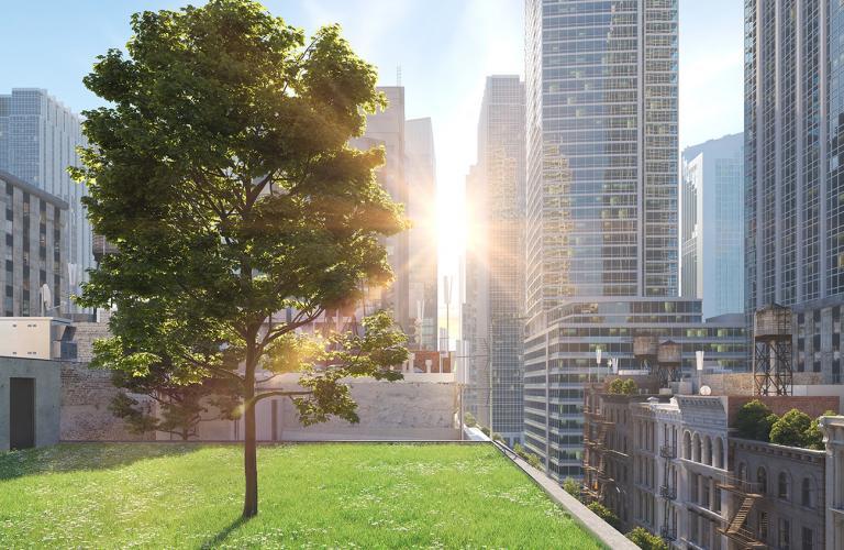 city-greenspace
