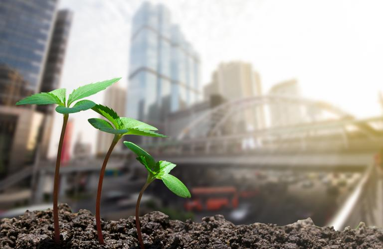 U.S. Real Estate Impact Investing