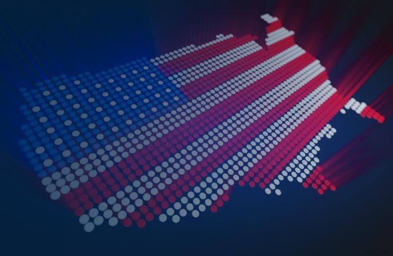 2020 U.S. Elections