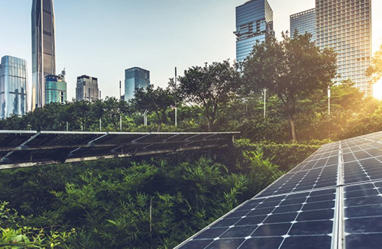 solar panels in city with greenery